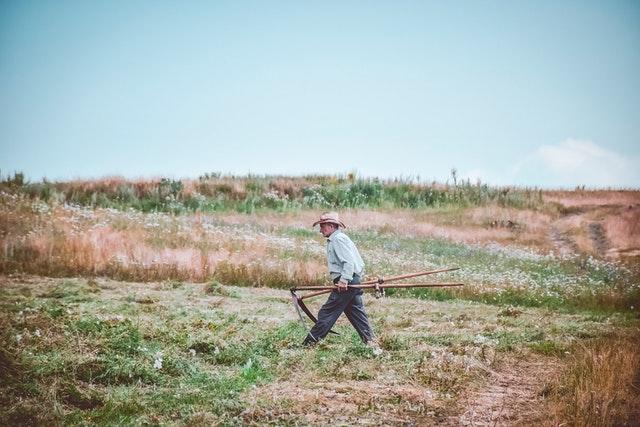 Rolnicze użytkowanie gleby